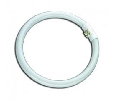 Zářivka kruhová T6 22W 4100 G10q TUBECIRCO-22W