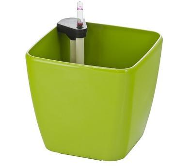 G21 Cube zelený 22 cm