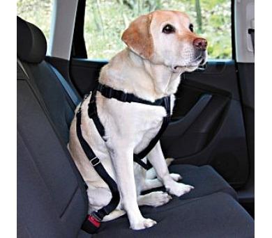 Nobby bezpečnostní pro psa do auta XL