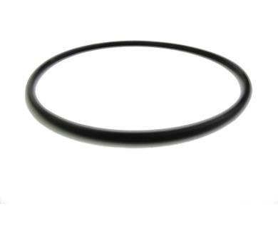 Těsnění víka filtrační nádoby Prostar - 20