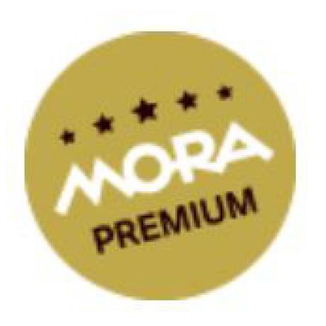 Tyčový mixér Mora MTP 600 X