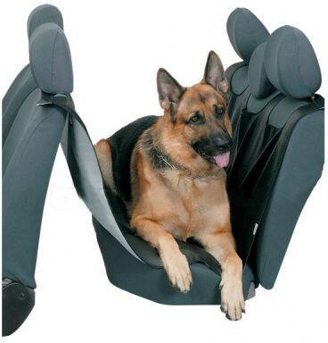Ochranná deka REKS pro psa do vozidla SIXTOL