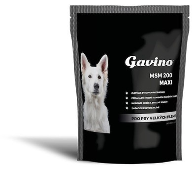 Gavino MSM 200g MAXI