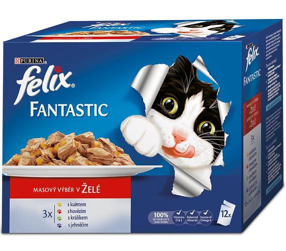 Felix cat kaps.-Fant.Multipack masový výběr 12 x 100 g