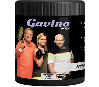 Gavino AKTIV MSM 700g (doplněk stravy)