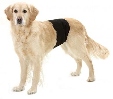 Karlie-Flamingo Inkontinenční kalhoty pro psy černé 59x19cm