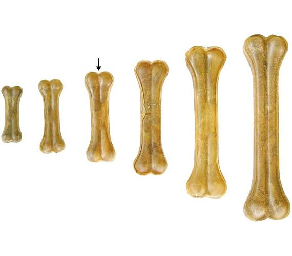 Duvo+ bůvolí kost 13 cm