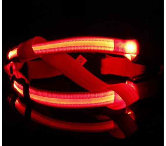 Reedog svíticí kšíry pro psy a kočky - červená S