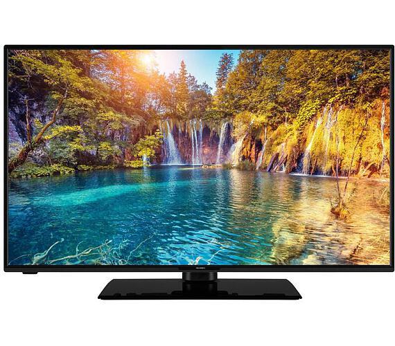 GoGEN TVF 43P452T + DVB-T2 OVĚŘENO + DOPRAVA ZDARMA