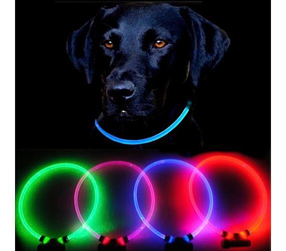 Reedog Full Light USB dobíjecí svítící obojek pro psy a kočky - růžová L