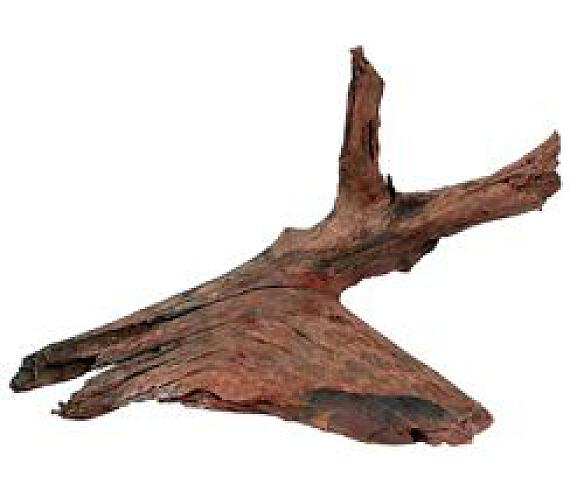 Akvarijní/terarijní kořen Mangrove M 25/40cm Zolux