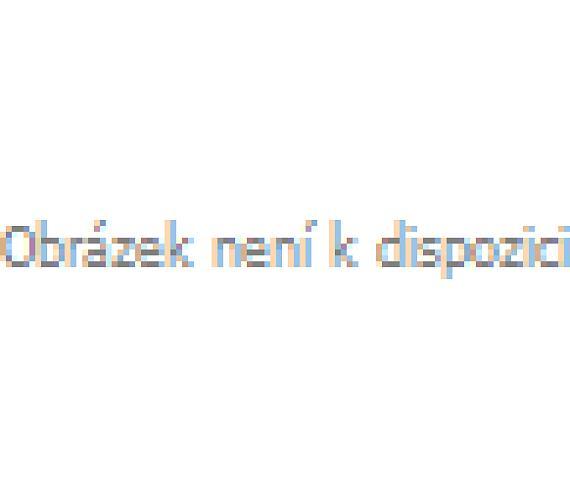 Digitální termostat PT10 vhodný k vysokým úsporám energie