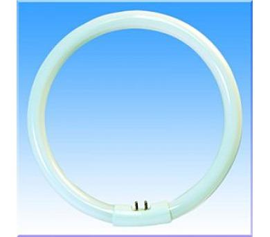 YH 40/40W/2700 zářivka kruhová Massive 8594010500206