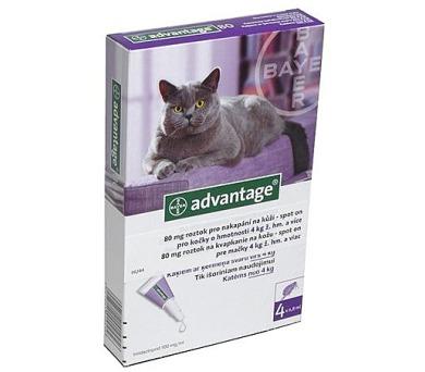 Bayer ADVANTAGE Spot-on Cat 4x0,8 ml (pro kočky 4 kg a více)