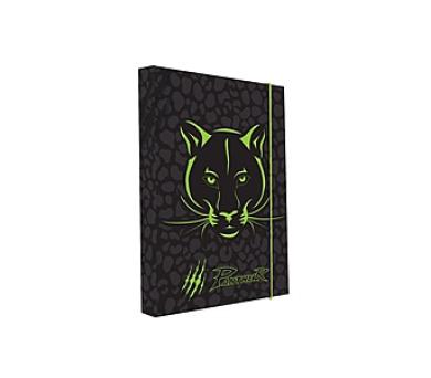 Desky na sešity P + P Karton A4 Panther