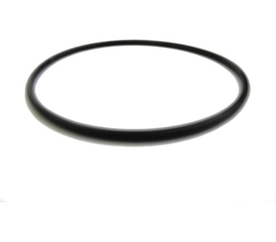 Těsnění víka filtrační nádoby Prostar (10604163)