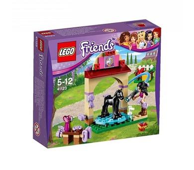 Stavebnice Lego® Friends 41123 Mytí hříbátka