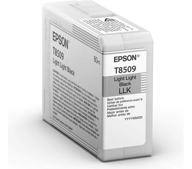Epson Singlepack Photo Light Light Black T850900 UltraChrome HD ink 80ml (C13T850900) + DOPRAVA ZDARMA