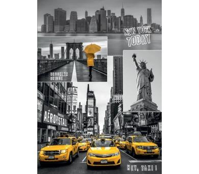 Dino puzzle New York - koláž 1000 dílků + DOPRAVA ZDARMA