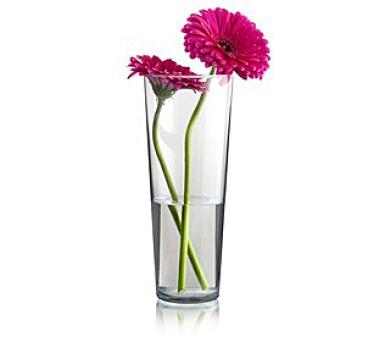 Váza skleněná kónická FLORA 26 cm