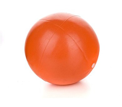 SPORTWELL Mini ball 25 cm