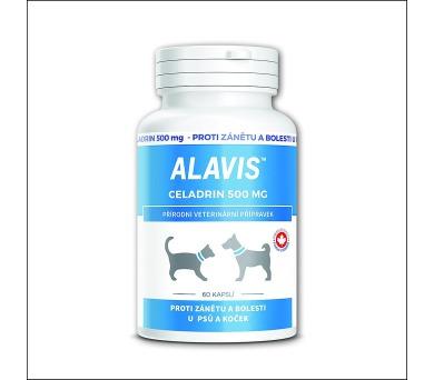 Alavis Celadrin 500 cps 60