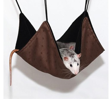 Pelech potkan závěsný - mix barev 30 x 30 cm