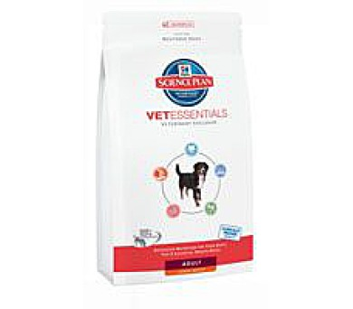 Hill's Canine Adult Large Breed VetEssentials 13 kg