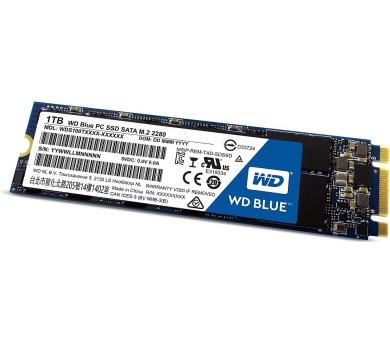 WD BLUE SSD WDS100T1B0B 1TB M.2