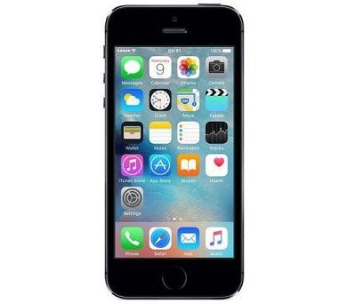 Apple iPhone 5S 16GB - šedý