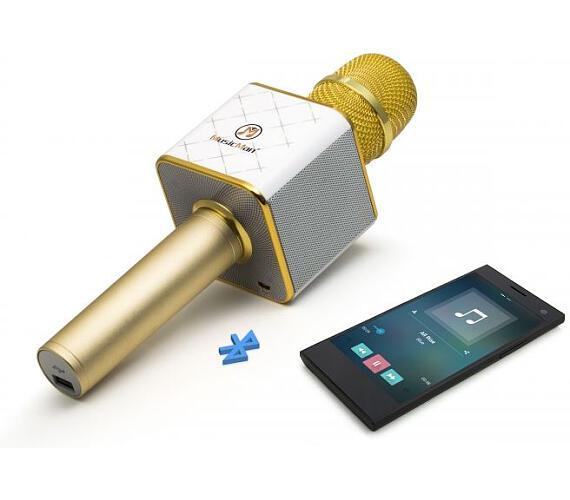 Technaxx bluetooth karaoke mikrofon se stereo reproduktorem (BT-X31)