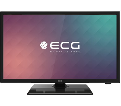 ECG 22 F01T2S2