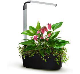 TREGREN T6Kitchen Garden, chytrý květináč, černý