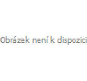 ELEKTROBOCK Termostat digitální PT10 vhodný k vysokým úsporám energie Elektrobock