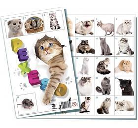 Pexeso Kočky společenská hra 32obrázkových dvojic